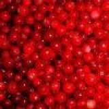 iqf wild lingonberry