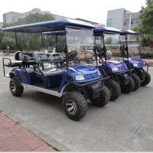 cheap golf cart with two back towards seater