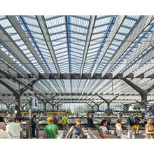Niedriger Preis und gute Qualität Transparente Dachziegel