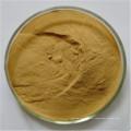Proantocianidinas de casca de pinheiro 95%
