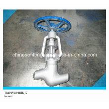 Válvula de globo de acero al carbono