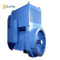 50HZ Low Voltage Industrial Generator