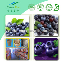 Natural Acai Extract Powder High Quality Low Price from Brazil Acai Berry 4:1 10:1 Juice Powder