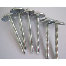 Special for Concrete Nails umbrella galvanized roofing nail supply to Venezuela Supplier