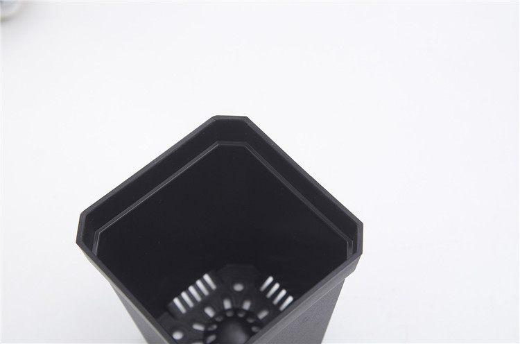 Small Square plastic Pot