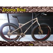 Fahrrad Teile/Fahrrad Rahmen/Titan Fahrradrahmen und Gabel Fat Bike Rahmen 3al2.5V 6al4V