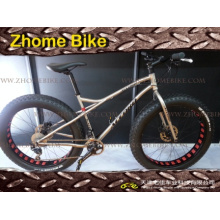 Cadre de bicyclette de vélo cyclo-pièces Frame/titane et fourche Fat Bike Frame 3al2.5V 6al4V
