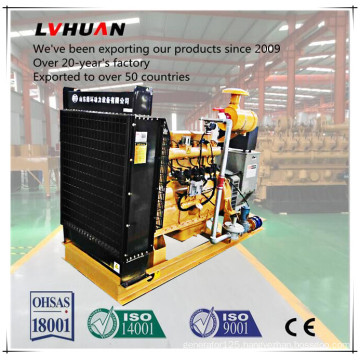 Hot Sale Farm Use Power Generator Biogas Genset Made in China