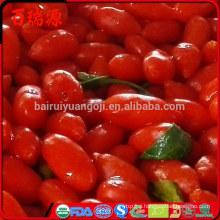 Ningxia siyah goji berry sweet gnc goji fresh goji berries