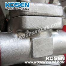 Válvula de retención de pistón de acero inoxidable de 800 lb