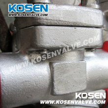 Stainless Steel Piston Check Valve 800lb