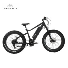 High quality 750w Bafang mid drive motor fat tire electric bicycle 2017