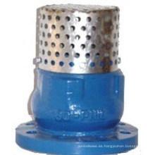 Filtro Ss con válvula de pie Silence Check