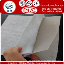 Espesor de la geomembrana de impermeabilización dentro de 3,0 mm y geotextil no tejido Peso / M2 dentro de 800 g / m2 para los nuevos materiales de impermeabilización