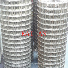 hebei anping kaian 1/4 inch g.i welded wire mesh
