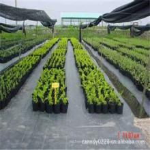 Estera anti de la mala hierba de la cubierta de tierra del jardín de los PP, estera barata del control de la mala hierba de la agricultura de China