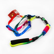 Rainbow Foam Handle dog Leash Harness Sets