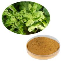 100% natural Herbal Extracts mimosa hostilis root bark powder