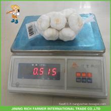 Nouvelle culture d'ail naturel chinois et frais