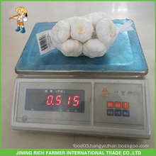 New Crop Chinese Fresh Natural Garlic