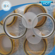Spring Energized PTFE Seal