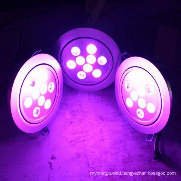 Dimmable 3W/6W/15W/27W RGBW LED Downlight