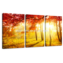 Autumn Forest Picture for Wall Decor/Sunset Scenery Photo Print on Canvas/Home Decor Natural Wall Art