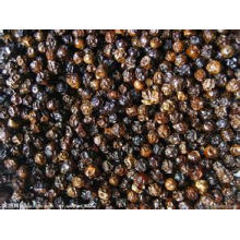 100% Natural Black Pepper Oleoresin