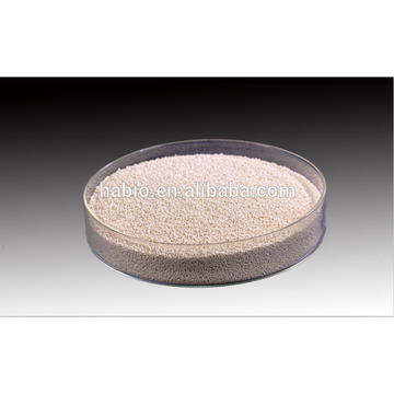 Alimentation protéase (100 000 U / g) Protéase neutre