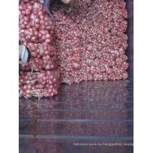 Новый свежий урожай 2013 года экспорт красного лука Индия
