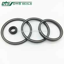 Energized PTFE Spring Seals