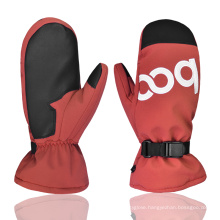 New Design Wear Resistant Outdoor Warm Keeping Ski Gloves