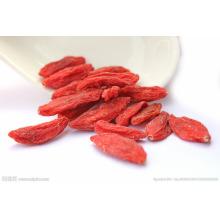Fructus Lycii, Lycii, Ningxia Bayas de Goji Wolfberries Beneficios de salud secos de Goji Gojihome chino Gojihome Goji berry Secado