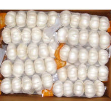 2015 New Crop Small Mesh Bag Packing Pure White Garlic