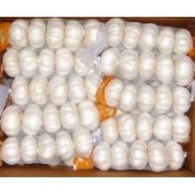 2015 Nueva cosecha pequeña bolsa de malla de embalaje de ajo blanco puro