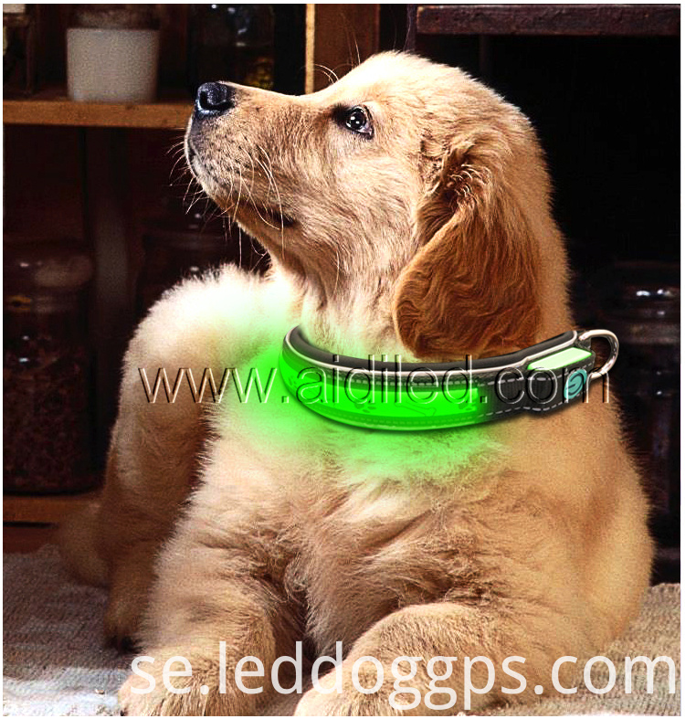 Flashing Led Nylon Pet Dog Collar