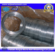 Electro Hot-Inpped Galvanized Wire for Binding with (CE et SGS)