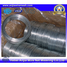 Electro Hot-Dipped Galvanized Wire for Binding with (CE and SGS)