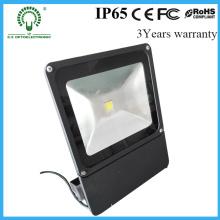 Lampe LED haute puissance AC85-265V Ww haute lumière extérieure