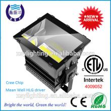 CETL DLC 1000W luz de inundação LED com driver meanwell