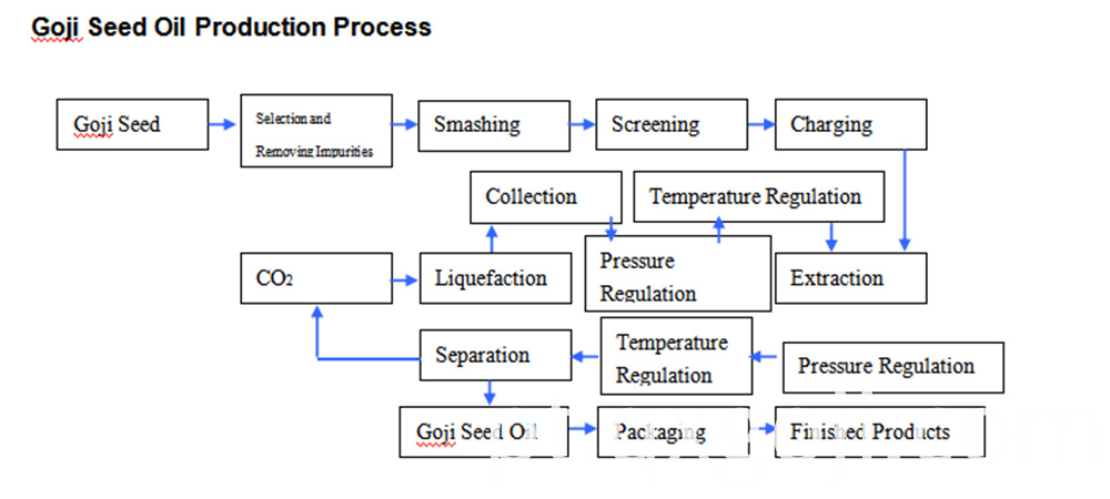 Prodtction Process Of Goji Seed Oil