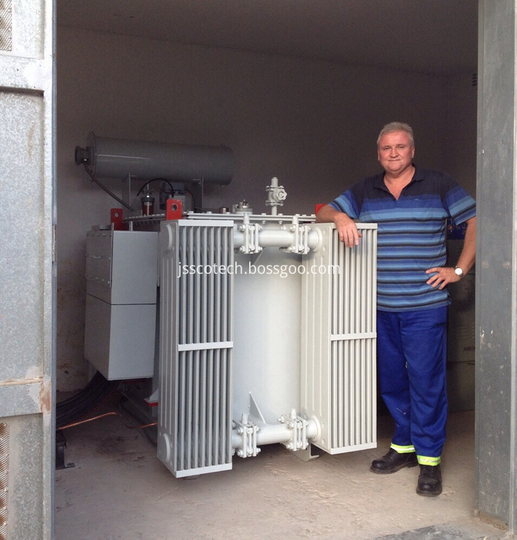 11kv distribution transformer 05