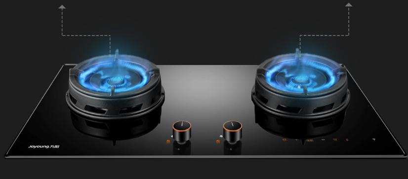 Multifunctional Gas Cooker