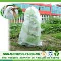 Tela no tejida de la agricultura, materia textil de TNT para la cubierta de la fruta