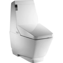 Bathroom Water Saving Intelligent Toilet (JN30701)