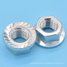 Fine Thread Hex Flange Nut (CZ449)