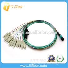 Factory Supply Ribbon Type MPO/SC Fiber Optic Patch Cord