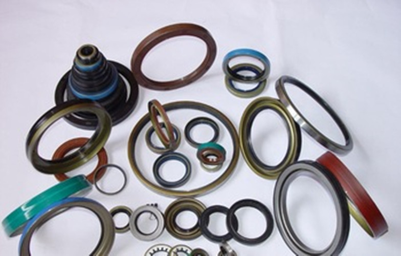 Train Spare - Oil Seal