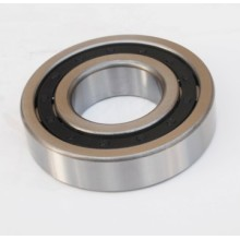 Cylindrical Roller Bearing (NJ313)