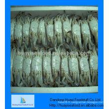 Crabes vivants congelés